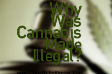 Why Was Cannabis Made Illegal?
