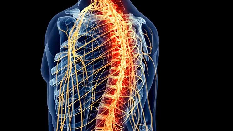 Does CBD oil help inflammation