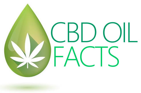 CBD Oil Facts Logo